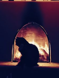 Jackson silhouetted by the fire